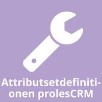 Attributsetdefinitionen prolesCRM