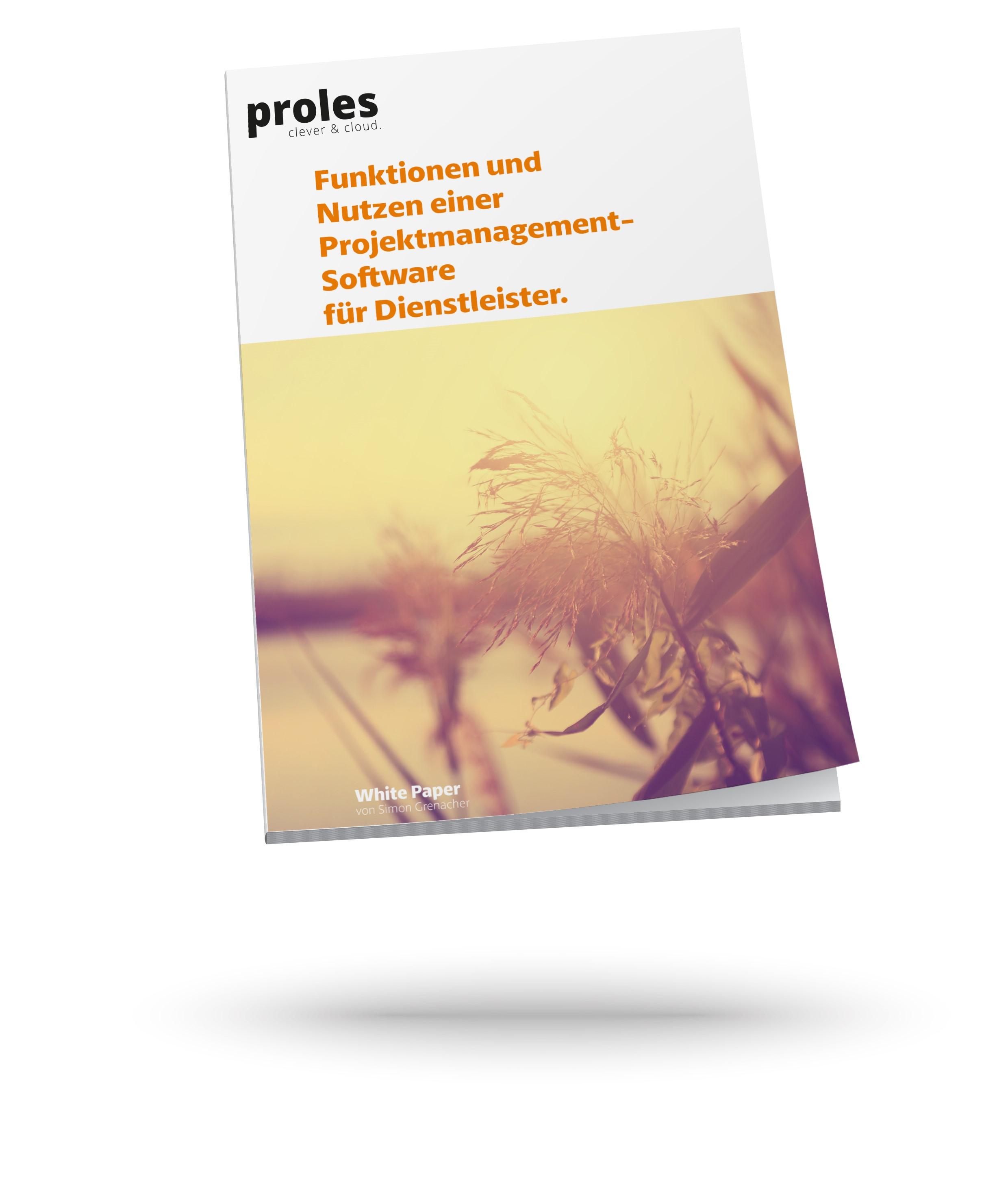 Funktionen und Nutzen einer Projektmanagement-Software für Dienstleister - White Paper