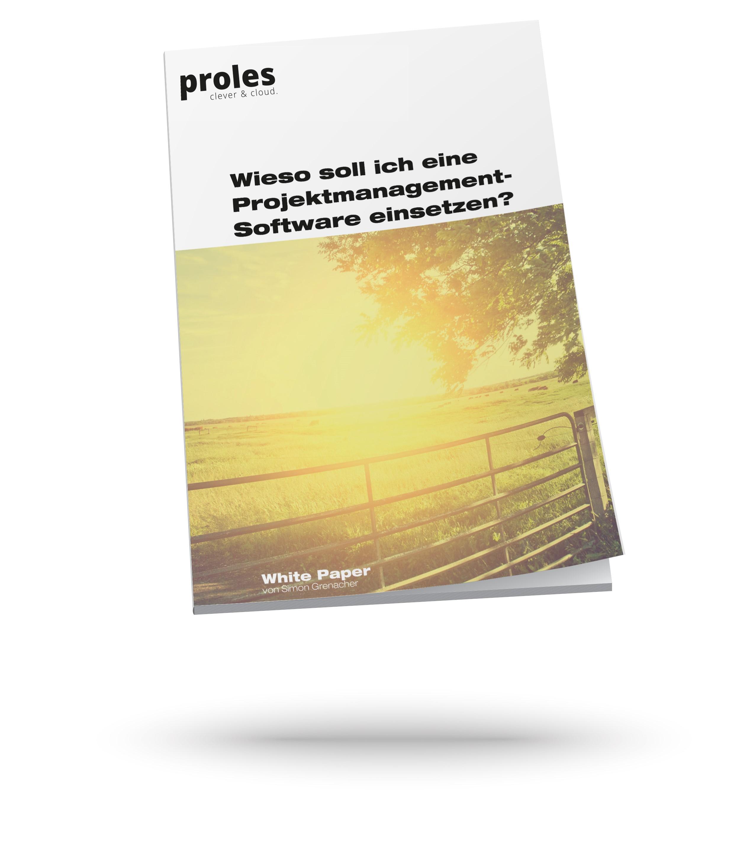 Wieso soll ich eine Projektmanagement-Software einsetzen? - White Paper