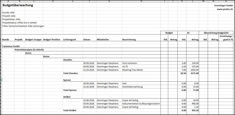proles - Budgetüberwachung - Excel-Export