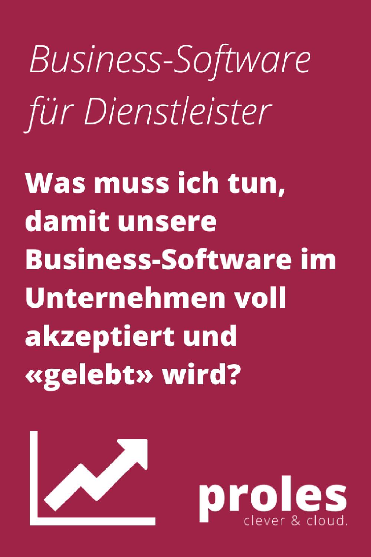 Was muss ich tun, damit unsere Business-Software im Unternehmen voll akzeptiert und «gelebt» wird?