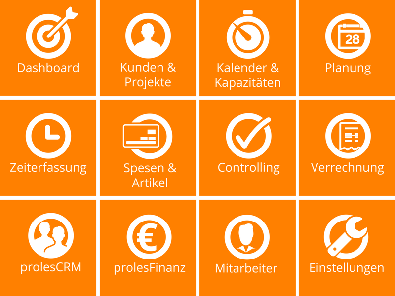 Welche Funktionen bietet die Projektmanagement-Software proles?